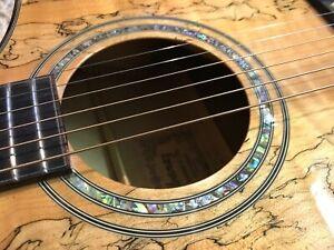 Ibanez EW50SME-NT1202 Exotic Wood Electro Acoustic Guitar Rare Jumbo Hi Quality