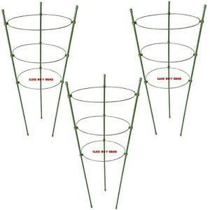 3 RING GARDEN PLANT SUPPORT 600mm HIGH CLIMBING PLANT TIE SUPPORT PACK OF 3