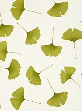 Marimekko Wall Coverings by Sirpi - Biloba Design - Green / Beige - 13040