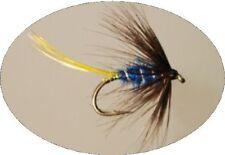 Pack De 12 Truites Mouche Humide Glenveagh Bleu Taille 12