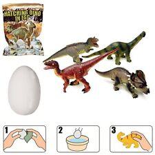 Un oeuf de dinosaure magique - Il éclot en 1h dans l'eau! Jouet dino aléatoire