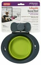 Dexas Popware Collapsible Kennel Bowl Green Small 1 Cup/8oz - 39429