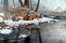 "Creekside by Jim Hansel Deer Signed and Numbered Print  Image 29"" x19"""