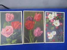 3 Swiss Floral Postcards Gyger & Klopfenstein, Adelboden Signed   P2