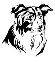 STENCILS CRAFTS TEMPLATES SCRAPBOOKING BORDER COLLIE HEAD  STENCIL  A4 MYLAR