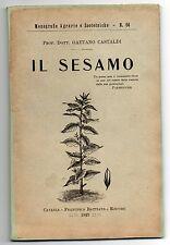 Gaetano Castaldi, Il sesamo, Catania, Battiato, 1922