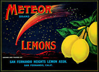 Original 1930 Meteor Lemon Label Vintage Fruit Crate Label San Fernando CA