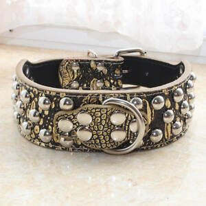 Brand New Gold Gator Leather Studded Dog Collar Big Dog Pitbull Terrier S M L
