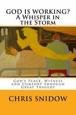 God's Game Changers: GOD IS WORKING? a Whisper in the Storm : God's Peace,...