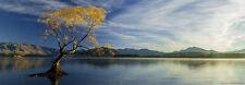 Panorama Puzzle Heye 1000 Teile Alex v Humboldt See Lake Wanaka Neuseeland 29673