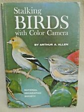 Vintage 1961 Stalking Birds with Color Camera / Arthur Allen/National Geographic