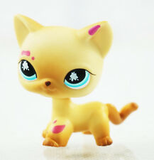 2'' Messiest Cream & Tan Cat  Littlest Pet Shop LPS #816 Kids Toys