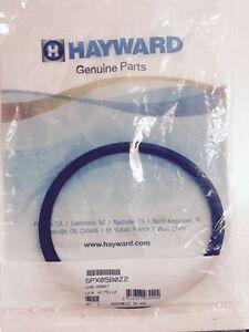 Genuine Hayward Astrolite Duralite Light Lens Gasket SPX0580Z2 SPX580Z2