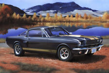 REVELL 1/24 PLASTIC KITS SHELBY MUSTANG GT350 H RE07242