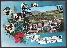 REGGIO EMILIA CASTELNOVO NE' MONTI 30 SALUTI DA... VEDUTINA Cartolina viagg 1960