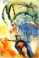 Set of x13 Alice in Wonderland RARE Salvador Dali.