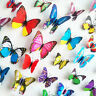 12 Pcs 3D Butterfly Wall Decals Removable Sticker Kids Art Nursery Decor Megnets