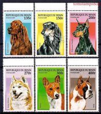 Benin 1997 Dogs Irish setter Saluki Doberman Siberian husky Basenji Boxer 6v MNH