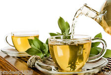 Buy Green Tea for Weight Loss - 4 Kgs. Wholesale Offer - Low Price