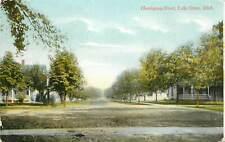 Michigan, MI, Lake Orion, Hemingway Street 1910 Postcard