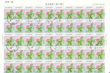 REP. OF CHINA TAIWAN 2009 FLOWERS 2ND ISSUE $1.00 FULL SHEET OF 100 STAMPS USED