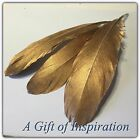 Pack of 3 Hand painted Gold Goose feathers 13-20cm craft/millinery/Decor/Vase