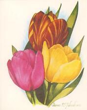 VINTAGE PINK YELLOW BURGUNDY COLOR TULIP FLOWER BOTANICAL SPRING NOTE CARD PRINT