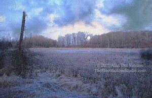 Frozen Wetlands ------ Landscape Giclée Print by Alan Del Vecchio