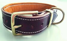 Large Brown Leather Dog Collar & Suede Padded Inner Lining with Brass Fittings