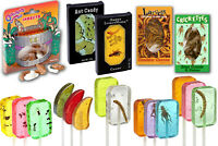 Real Edible Insects PARTY PACK Bug Candy Sampler - Crickets Worms Chili Suckers