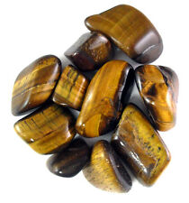 30-45 pcs  1/4lb golden tumbled stone Bulk small Tigers Eye Natural Crystals