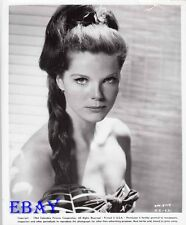 Samantha Eggar busty VINTAGE Photo The Collecter