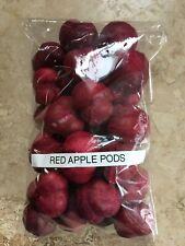 Free Ship Bag of 28 Apple Pods Red/Magenta