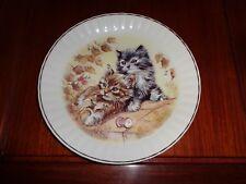 Un Named Collectors Plate Cat PLAYFUL KITTENS