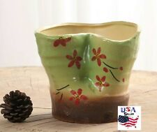 Succulent Plant Flower Ceramic Pot- Green