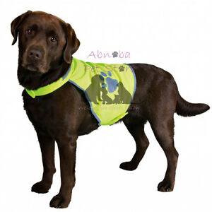 Safety Vest for Dog | Puppy reflective Winter Night Road Safety fully adjustable