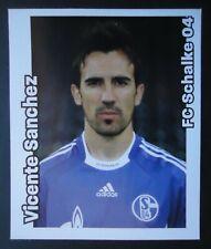Panini 435 Fussball BL 2008/09 Vicente Sanchez FC Schalke 04