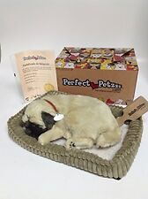 Perfect Petzzz XP91-09 Huggable Pug Puppy
