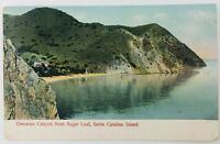 Vintage Catalina Island California CA Descanso Canyon from Sugar Loaf 1906