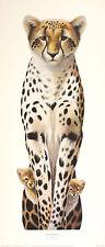 Warwick Higgs Peek-a-boo Cheetah Art Print Humor Nuevo Tamaño:60 cm X 21 Cm Raro