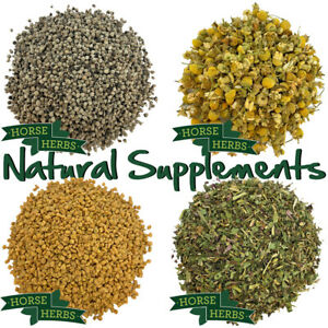 Horse Herbs Natural Feed Supplements 1kg - Natural Health Supplements for Horses