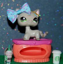 Littlest Pet Shop #483 Gray Stripe Short Hair Cat 💯Authentic