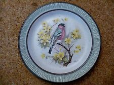 Bullfinch decorative plate Purbeck pottery 18 cms diameter