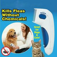 Electric Dog Cat Anti Removal Kill Lice Cleaner Head Pet Fleas Terminator