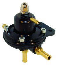 Fpr014 Malpassi CARBURANTE Regolatore di pressione (iniezione per la conversione (CARB))