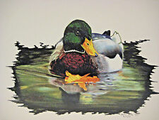 Mallard Duck Print Barry Prinz 1999 Signed & Numbered Limited Edition 4/100