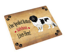 Spoiled Rotten Stabyhoun Dog Tempered Cutting Board (Large) Db1559