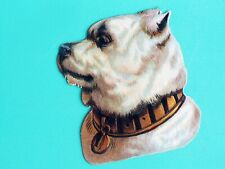Antique die Cut ad Pit bull Staffordshire Bull terrier dog w big Lock key collar