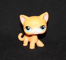 Littlest Pet Shop LPS Orange Shorthair CAT #71 Blue Eyes Kitten Yellow white