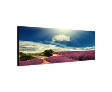 120x40cm Lavendelfeld Panorama blau lila Provence Rahmen Leinwand Bild Sinus Art
